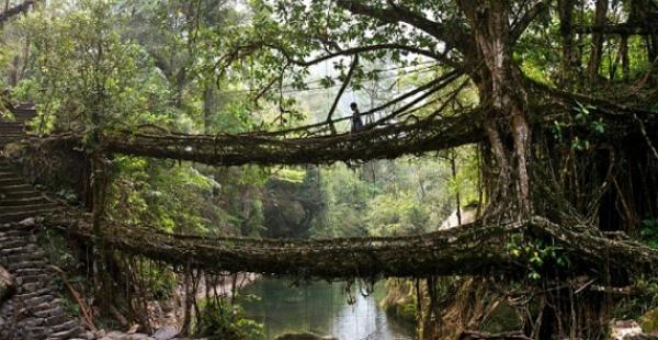 рис.7. Самые необычные и удивительные мосты мира