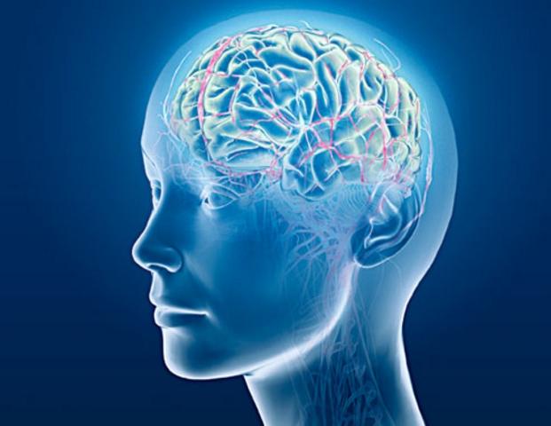 рис.4. Иллюзия гриля: нейроны и сосиски