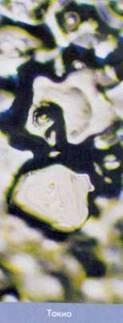 Кристаллы льда: Рис.17