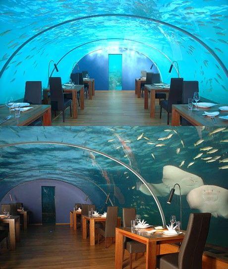 Самые необычные рестораны: Рис.13