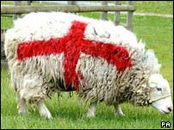 Окрашенные овцы: Рис.8
