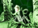 Что такое вирус? Популярно и доходчиво о вирусах.
