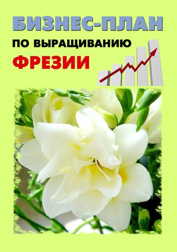 Бизнес-план по выращиванию фрезии