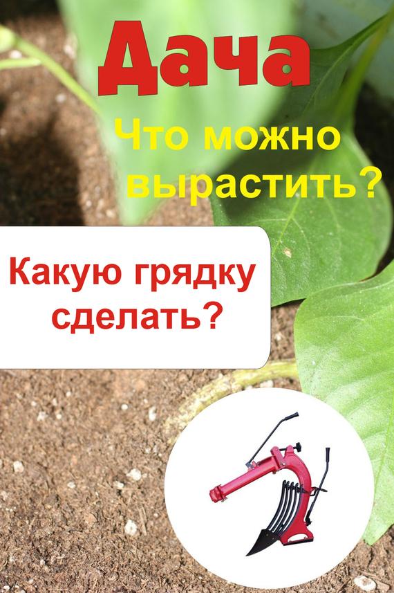 Что можно вырастить? Какую грядку сделать?