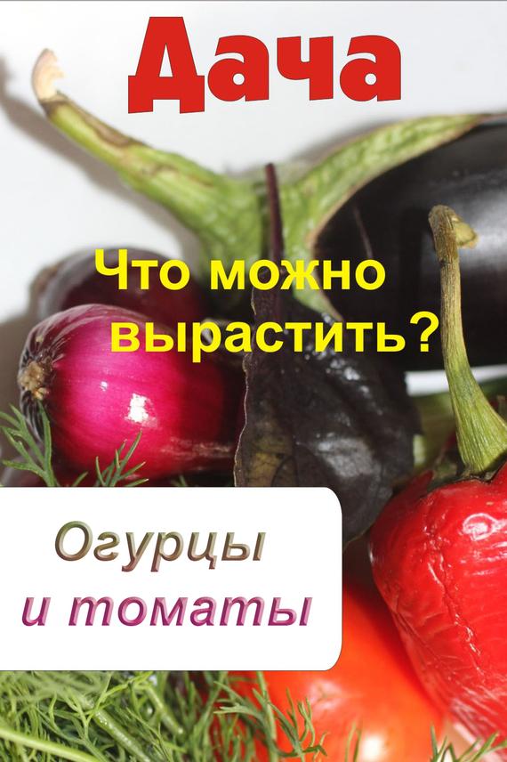 Что можно вырастить? Огурцы и томаты