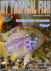 My Tropical Fish 2007.04