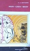 Звук-слух-мозг