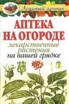 Аптека на огороде: Лекарственные растения на вашей грядке