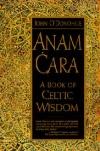 Душевный друг. Мудрость из Кельтского Мира