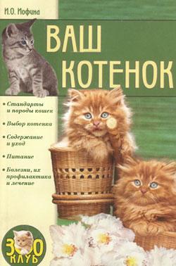Ваш котенок