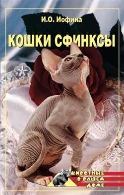 Кошки – сфинксы