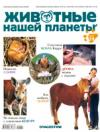Животные нашей планеты. Часть 29