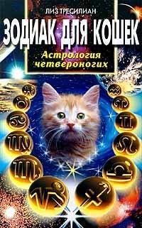 Зодиак для кошек. Астрология четвероногих