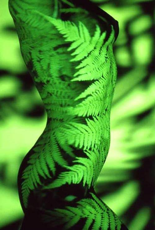 Искусство освещения: Рис.5