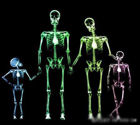 Жизнь в лучах рентгена: Рис.1