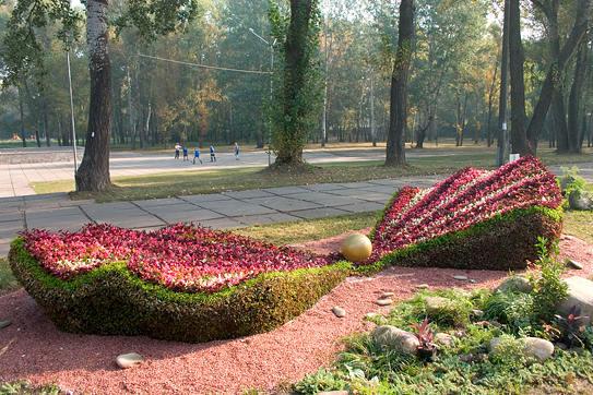 Скульптуры и фигуры из цветов: Рис.2