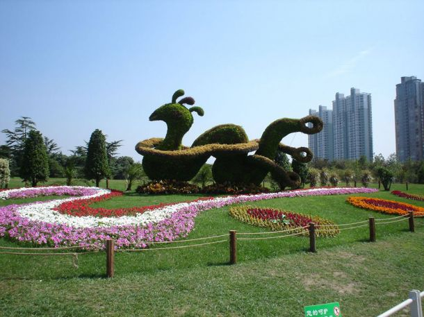 Скульптуры и фигуры из цветов: Рис.10