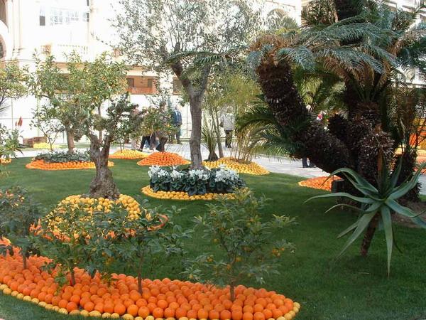 Апельсины и лимоны: Рис.1