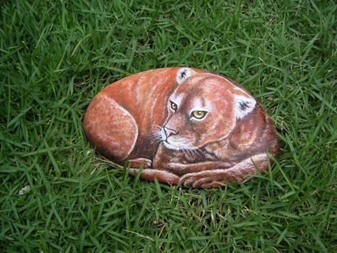 Рисунки на камнях : Рис.1