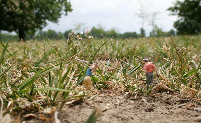 Маленькие человечки - 3: Рис.5