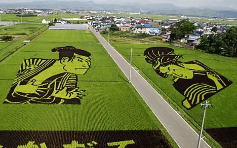 Произведения искусства из риса: Рис.3