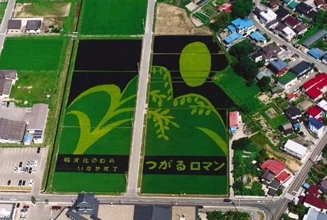 Произведения искусства из риса: Рис.4