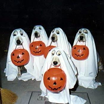 Хэллоуин: Рис.6