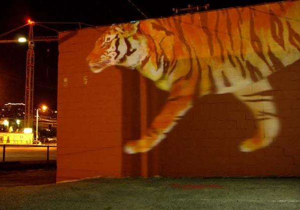 Бегущий тигр: Рис.2