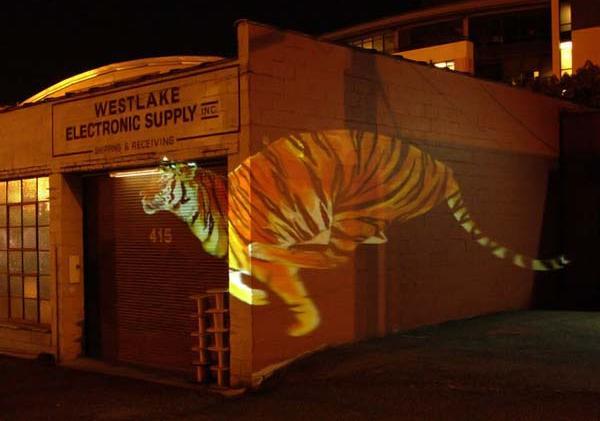 Бегущий тигр: Рис.3