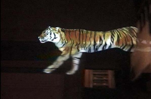 Бегущий тигр: Рис.7