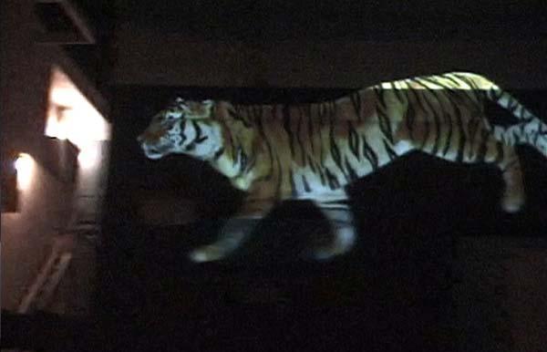 Бегущий тигр: Рис.8