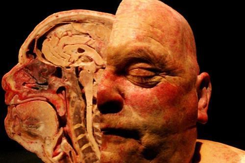 Выставка живых мертвецов: Рис.4