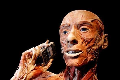 Выставка живых мертвецов: Рис.6