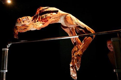 Выставка живых мертвецов: Рис.9