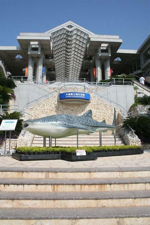 Гигантский аквариум: Рис.2