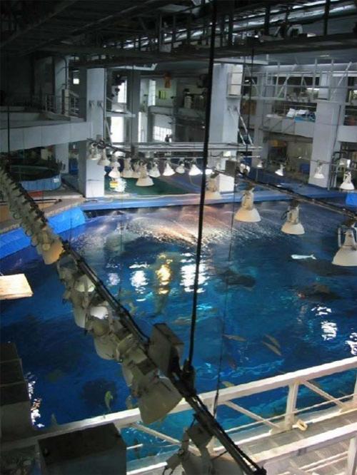 Гигантский аквариум: Рис.3