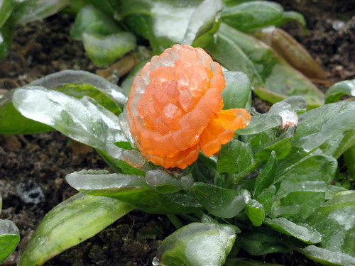 Замерзший дождь: Рис.4
