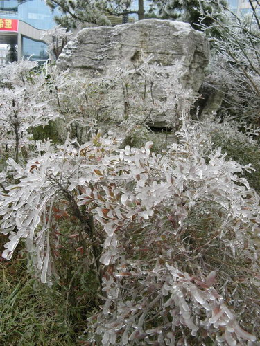 Замерзший дождь: Рис.9