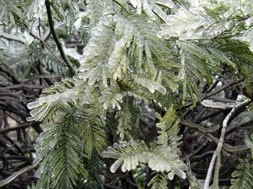 Замерзший дождь: Рис.14